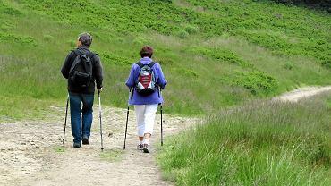 Turyści w Beskidach