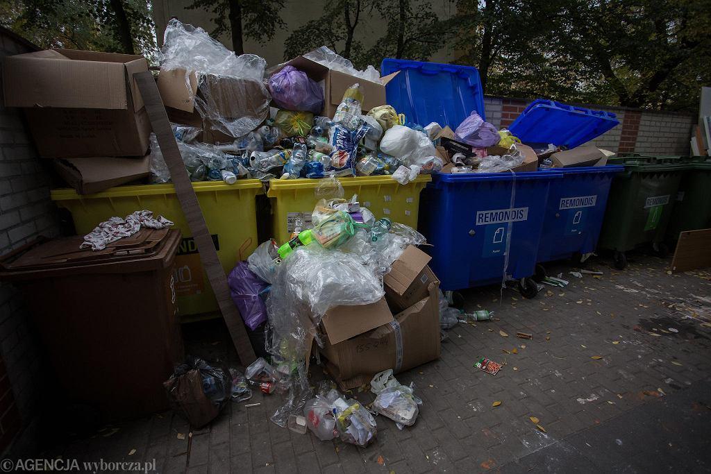 Od września będziemy płacić kary za nieprawidłowe segregowanie śmieci
