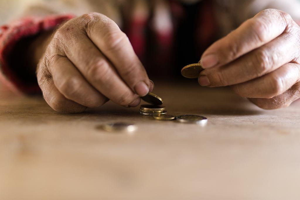 Czternasta emerytura. Minister rodziny uspokaja: Większość osób otrzyma 14. emeryturę w pełnej wysokości