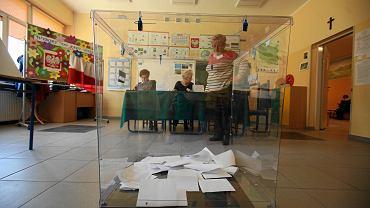 Wybory do europarlamentu 2019 - na kogo zagłosuje Prof. Podemski?