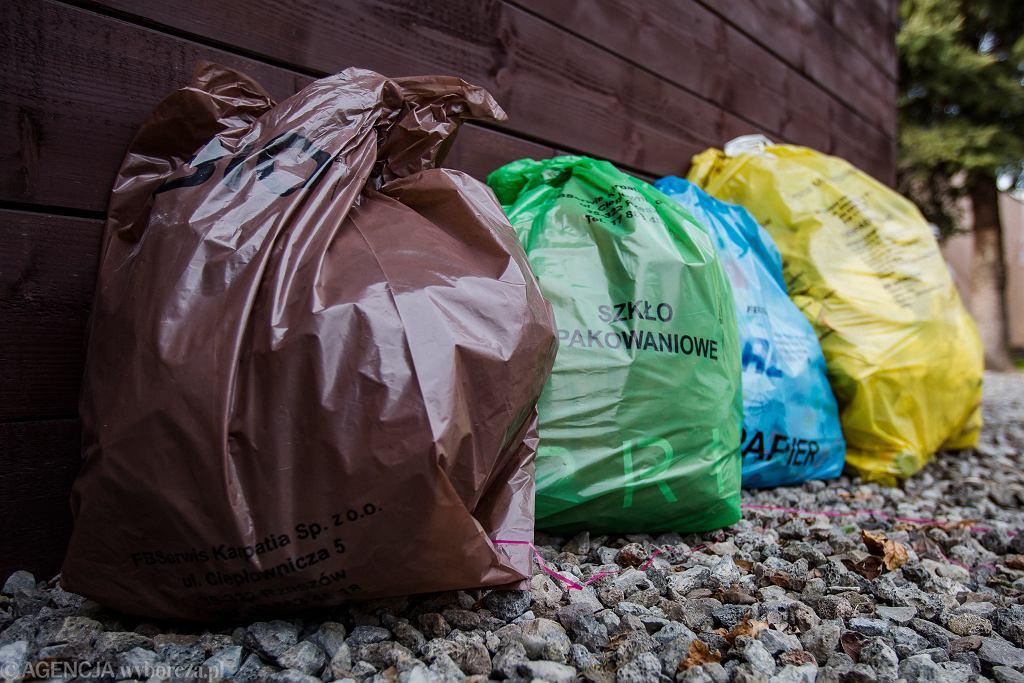 Sondaż: Ponad 90 proc. Polaków mówi, że segreguje śmieci. Rzeczywistość jest jednak inna
