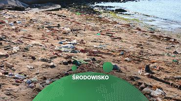 Zanieczyszczona plaża (zdjęcie ilustracyjne)