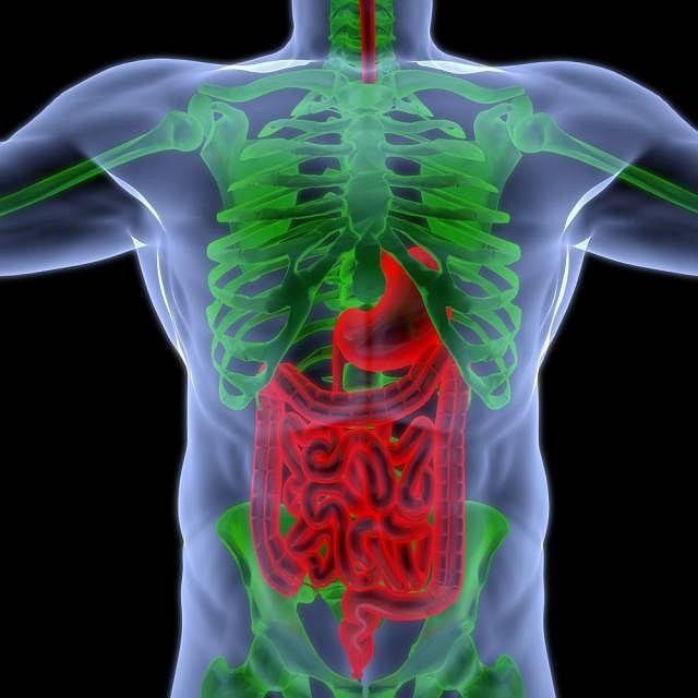 Manometria jest rodzajem badania gastrologicznego,które pozwala dokonać pomiaru ciśnienia na wysokości odbytnicy