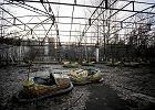 Czarnobyl: Ukraina zbuduje na skażonych terenach farmę solarną?