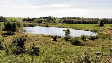 Chechło, wyrobisko po kopalni gipsu koło Gartatatowic (gm. Kije). Obszar Natura 2000
