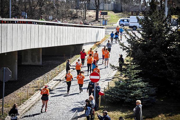 Zdjęcie numer 31 w galerii - Otwarcie sezonu biegowego w Łodzi.