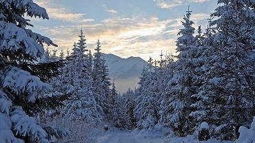 W Tatrach obowiązuje 4. stopień zagrożenia lawinowego