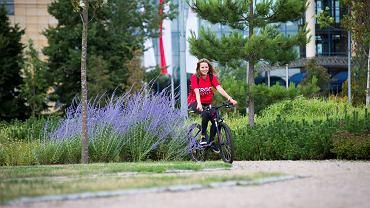 'Rower na zawsze', program Ergo Hestia