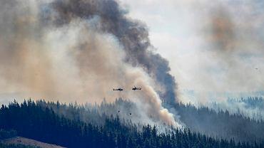 Pożary w Nowej Zelandii