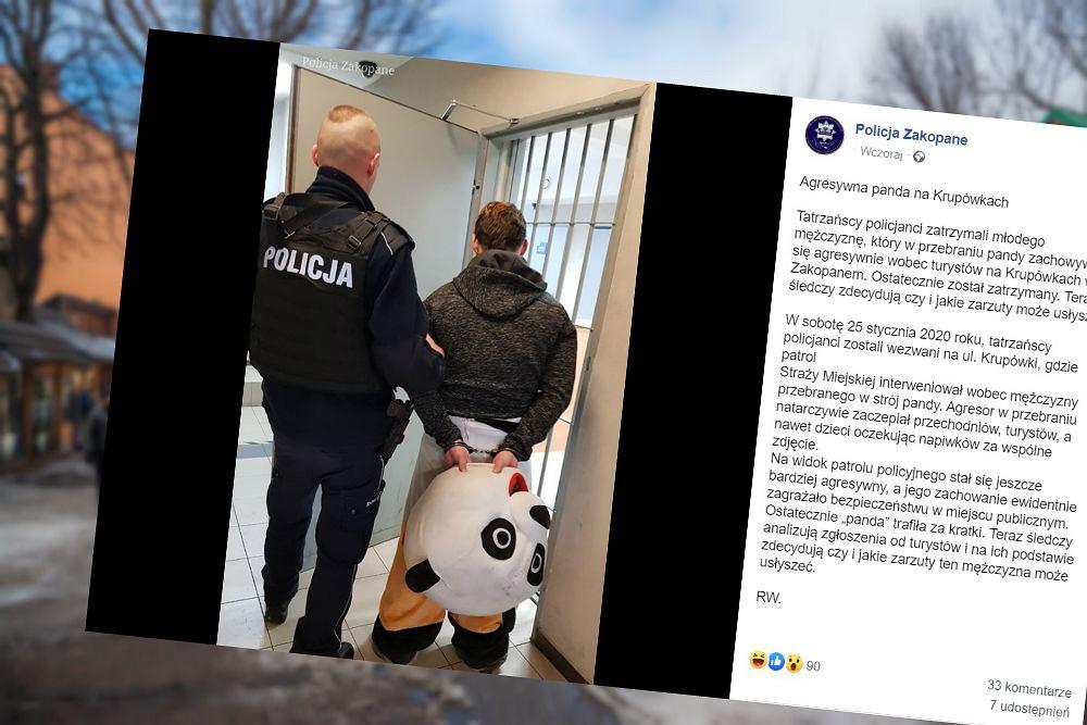Policja zatrzymała na Krupówkach agresywnego mężczyznę w przebraniu pandy