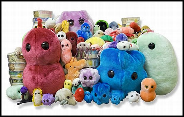 http://www.giantmicrobes.pl/