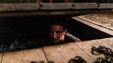 'W lesie dziś nie zaśnie nikt'. Julia Wieniawa