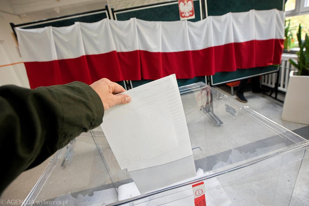 Wybory / zdjęcie ilustracyjne