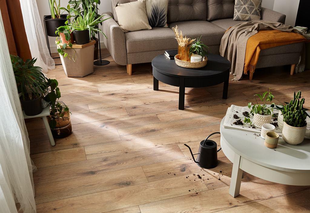 Podłoga Querra WR dodaje naszej przestrzeni przytulności, wyróżniając się idealnie odwzorowaną strukturą drewna. Na zdjęciu: podłoga Querra Harmony WR w kolorze dębu.