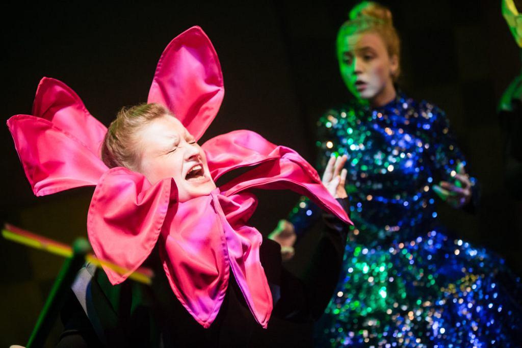 'Alicja po drugiej stronie lustra' Teatr PAPAHEMA