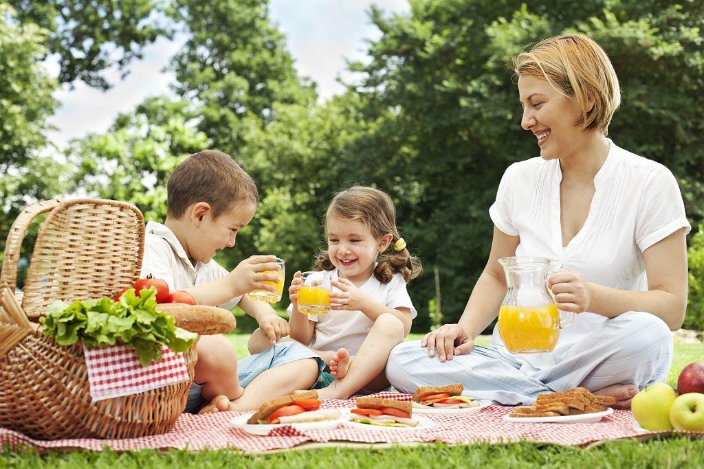 Piknik z dziećmi
