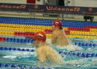 Sportowa Akademia Veolii pływakami stoi