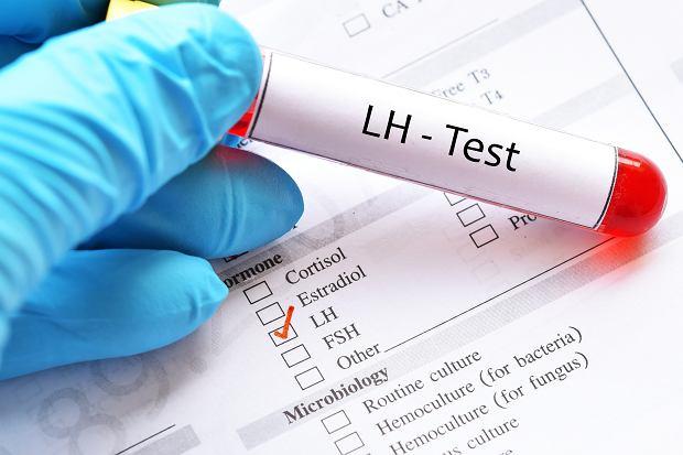 Lutropina LH - za co odpowiada hormon luteinizujący?