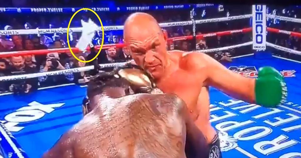 Narożnik Deontaya Wildera rzuca ręcznik w starciu z Tysonem Furym