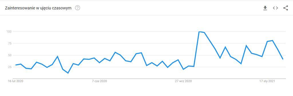 Google Trends - wyszukiwania w ciągu ostatnich 12 miesięcy