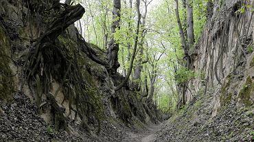Sandomierz, 25 kwietnia 2017 rok. Wąwóz Królowej Jadwigi