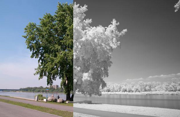 Zdjęcia w podczerwieni pokazują poziom pochłaniania lub odbijania promieniowania słonecznego (im ciemniejszy obiekt, tym większe pochłanianie)