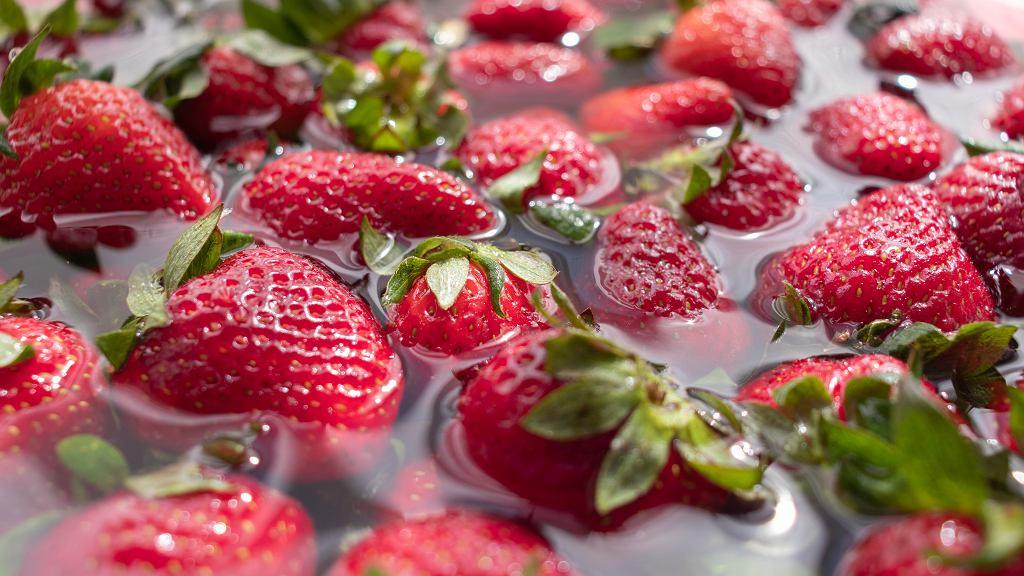 Tiktokerka pokazała, jak usunąć robaki z truskawek. 'Już nigdy więcej nie zjem tych owoców'