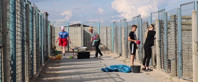 """Schronisko w Radysach. """"Odcięto wodę, psy pozbawiono karmy"""""""