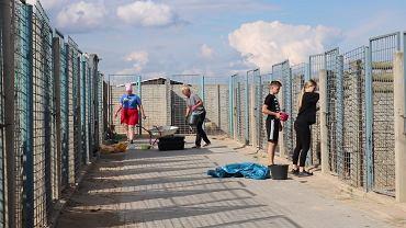 Wolontariusze apelują o pomoc w schronisku w Radysach