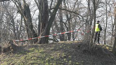 W lesie koło Imbramowic znaleziono zwłoki dziewczynki (zdjęcie ilustarcyjne)