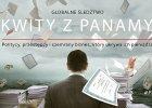 """Panama Papers - śledztwo """"Süddeutsche Zeitung"""" i ICIJ. Łupienie świata w cieniu palm"""