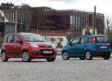 Kupujemy używane: Fiat Panda III vs. Kia Picanto II. Dobre nie tylko do miasta