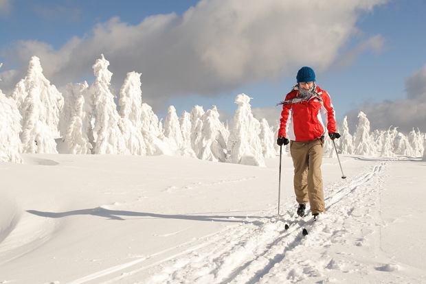 Warto od początku pracować nad techniką na nartach biegowych, nie utrwalać błędów