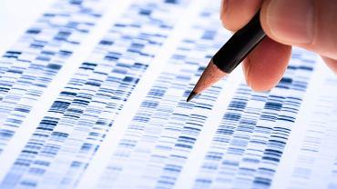 Genetyka - to nauka o mechanizmie dziedziczenia cech organizmów oraz ich zmienności