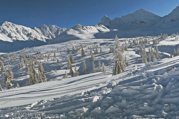 Zdjęcie numer 28 w galerii - Słońce, śnieg i szczyty. Piękna pogoda w Tatrach, zachwycające widoki