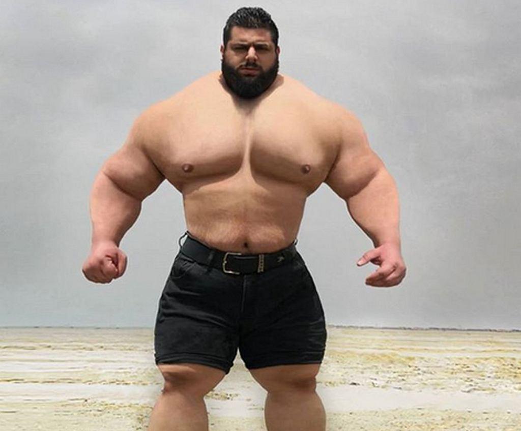 https://bi.im-g.pl/im/d3/3d/18/z25419219IH,Iranski-Hulk.jpg