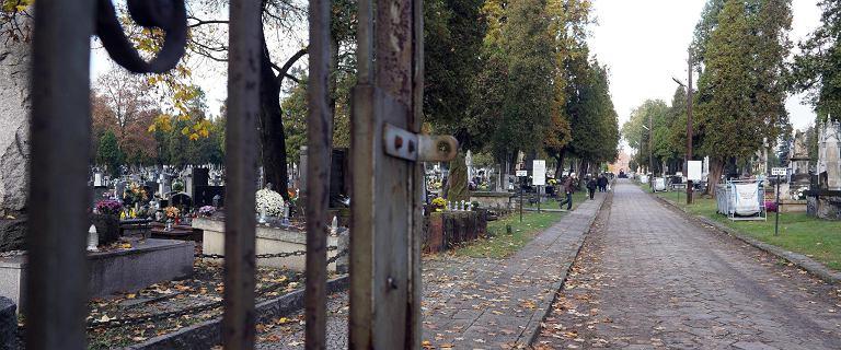 Łódzkie: Proboszcz przemianował cmentarz na park i zaprosił wiernych