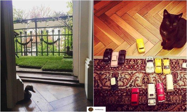 Zdjęcie numer 8 w galerii - Marta Kaczyńska pokazała sopockie mieszkanie swoich rodziców. Wnętrza w starym stylu robią wrażenie