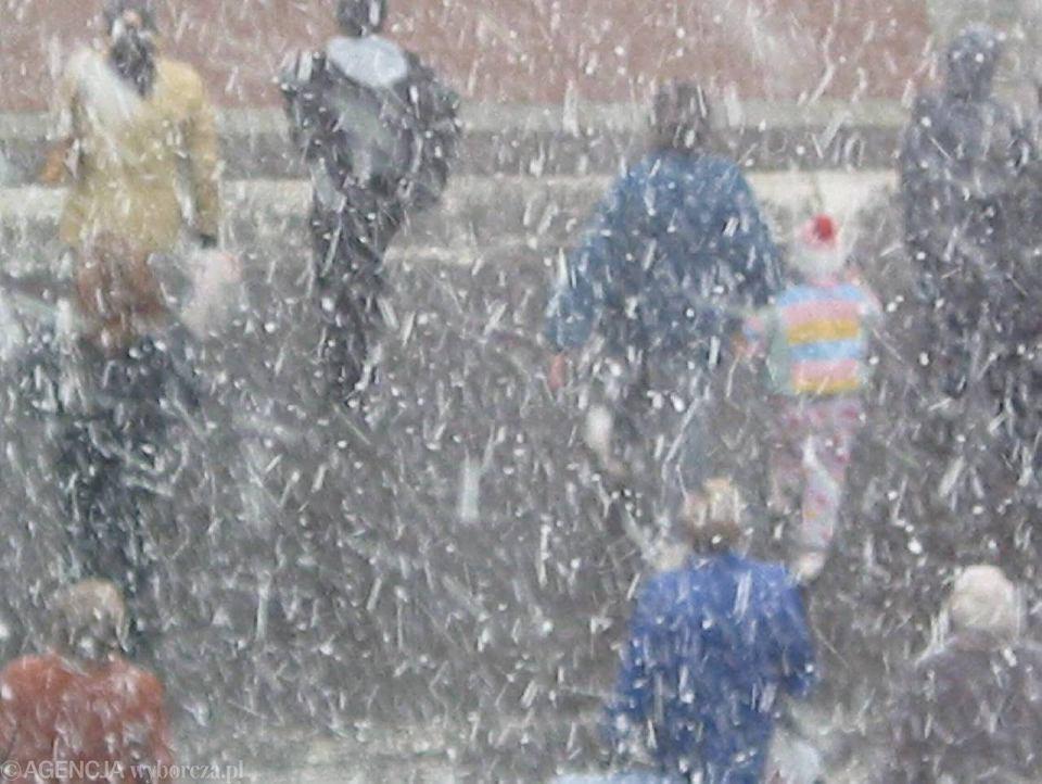 Pogoda w poniedziałek 28 stycznia 2019 r. W całym kraju będzie odwilż.