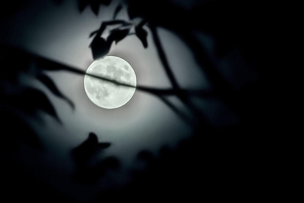 Księżyc nad Płockiem
