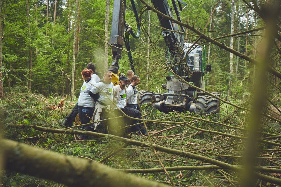 Aktywiści Greenpeace po raz kolejny zablokowali wycinkę w Puszczy Białowieskiej. Tym razem protestowali przeciwko kontynuowaniu cięć w okresie lęgowym ptaków. W starym drzewostanie, w którym aktywiści zablokowali pracę ciężkiego sprzętu, obserwowano chronione, rzadkie gatunki ptaków - dzięcioła białogrzbietego i sóweczki. Wycinka zakłóca ich spokój i niszczy siedliska