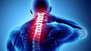 Ketonal stosowany jest leczeniu bólu, gorączki, stanów  zapalnych