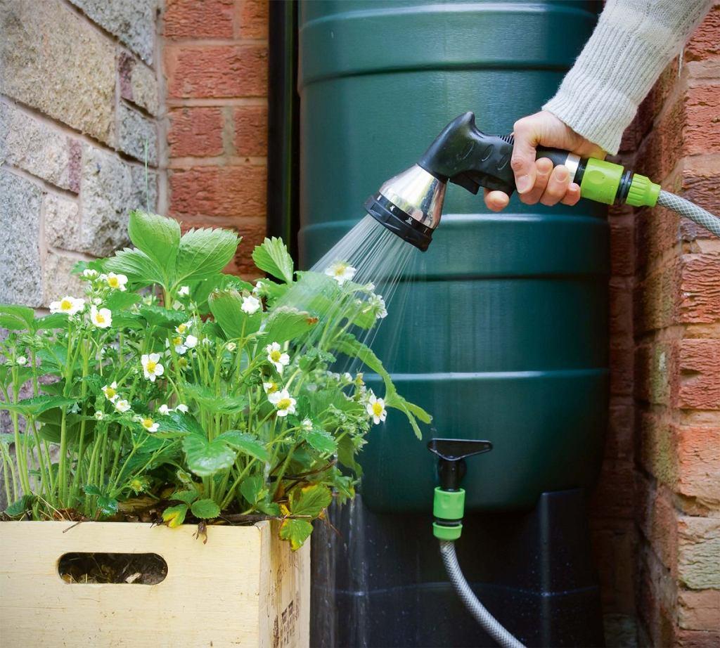 Plastikowa beczka z kranikiem, do którego można podłączyć ogrodowy wąż, to zestaw minimum do zbierania deszczówki