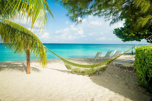 Zima pod palmami - wypoczynek na Kubie, Dominikanie lub w Tajlandii to strzał w dziesiątkę!