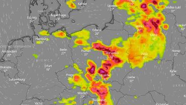Komórki burzowe w Polsce - mapa.