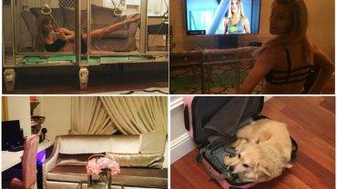 Jakiś czas temu Maja Bohosiewicz zrobiła remont swojego mieszkania, a efektami pochwaliła się na Instagramie. Wnętrze prezentuje się oryginalnie, ale nas i tak najbardziej rozbawiły hashtagi, którymi opatrzyła zdjęcia. Zobaczcie, jak się urządziła.