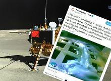 Chińczycy wyhodowali pierwszą w historii roślinę na Księżycu
