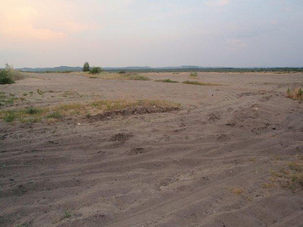 Pustynia Błędowska w lipcu 2010 roku/ Fot. CC BY-SA 3.0/ Manfred Rackelhuhn/ Wikimedia Commons