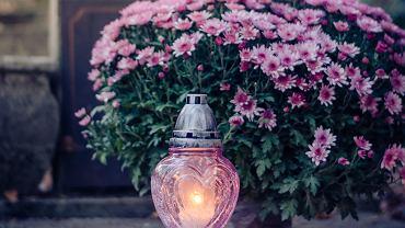 Do zdobienia grobów często wykorzystujemy goździki i róże, ale i tak najpopularniejsze są chryzantemy.