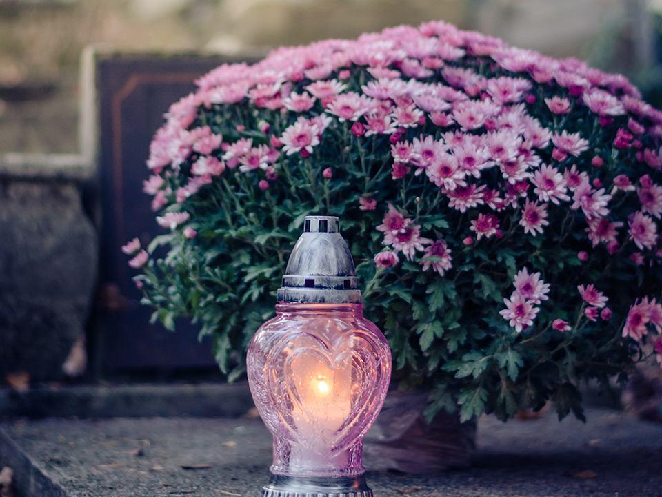 Wszystkich Swietych Jakie Kwiaty I Znicze Kupic Na 1 Listopada Poradnik Odeszli Pl
